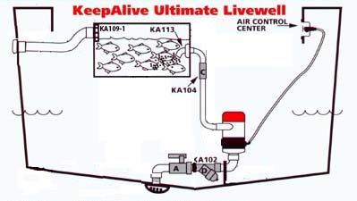 install wiring diagram for boat livewells readingrat net aerator pump wiring diagram at soozxer.org